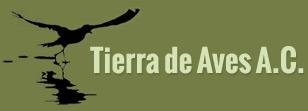 Tierra de Aves - Birding in Mexico